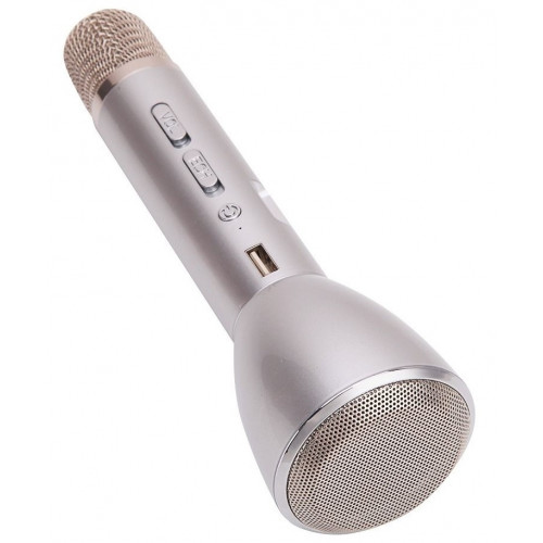 колонка микрофон+Bluetooth+USB+радио+аккумулятор WSTER WS-2811