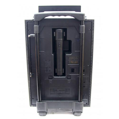 колонка чемодан GOLON 50см+USB+FM+микрофон+эквалайзер+светомузыка+аккум RX-2099QW
