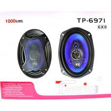 автоколонка 16см*23см/1000w TP-6971