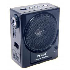 радиоприемник GOLON громкоговоритель с записью USB фонарик RX-2999REC